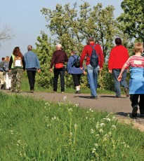 The wonderful Stride for Life walks can be found weekly throughout Perthshire and this Wednesday walk is a great way to explore a bit of North Muirton, Perth with other people in the area.