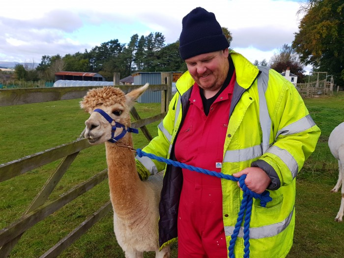 Southton Smallholding -aEwan and the Alpaca
